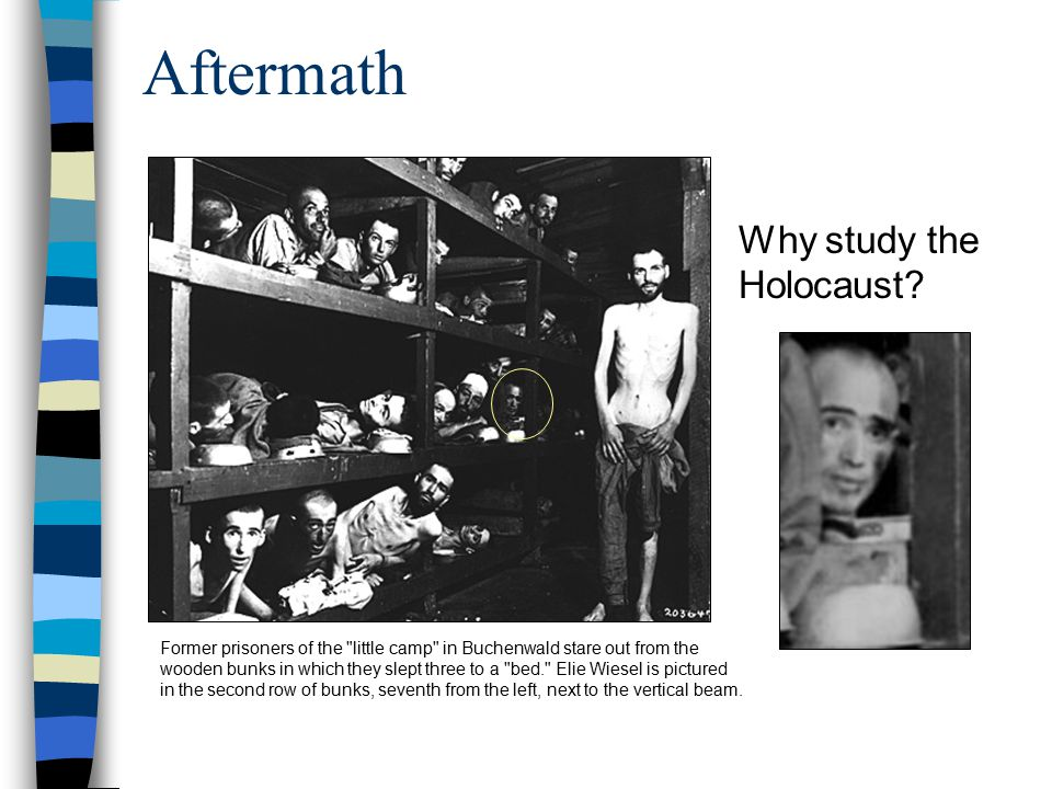Aftermath Why study the Holocaust