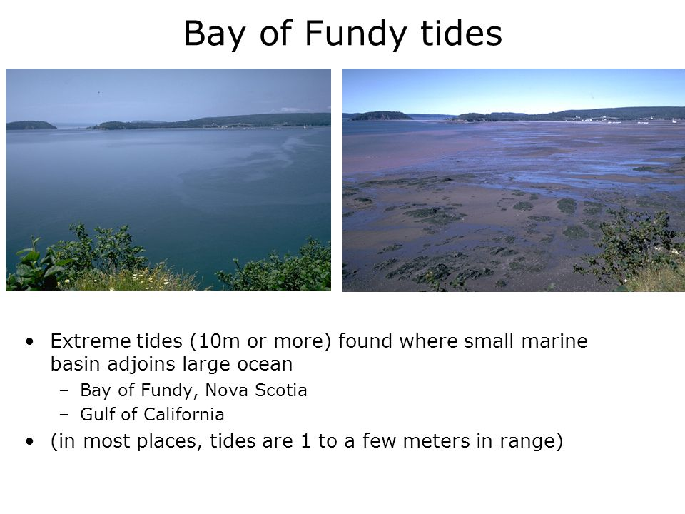 Bay of Fundy tides Extreme tides (10m or more) found where small marine basin adjoins large ocean. Bay of Fundy, Nova Scotia.