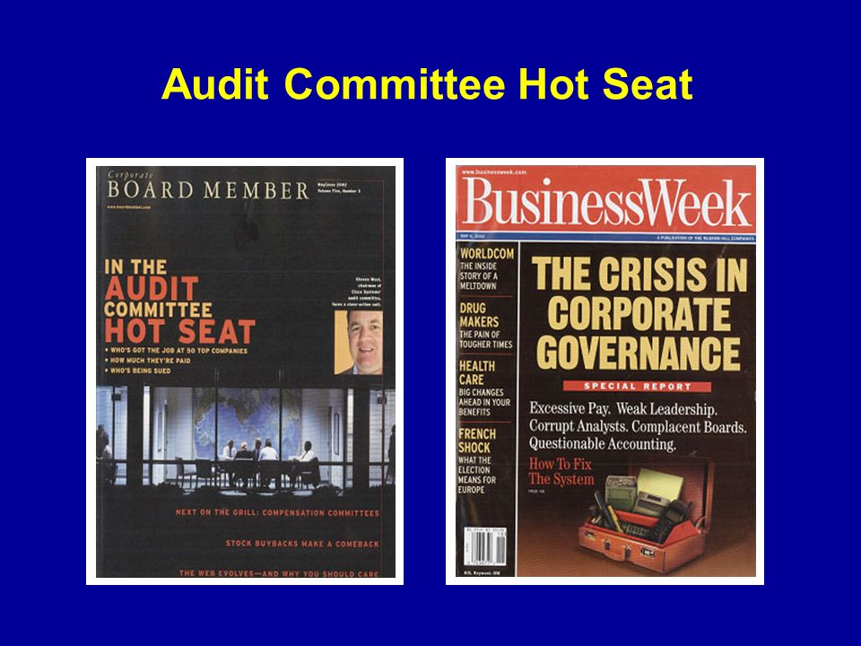 Audit Committee Hot Seat