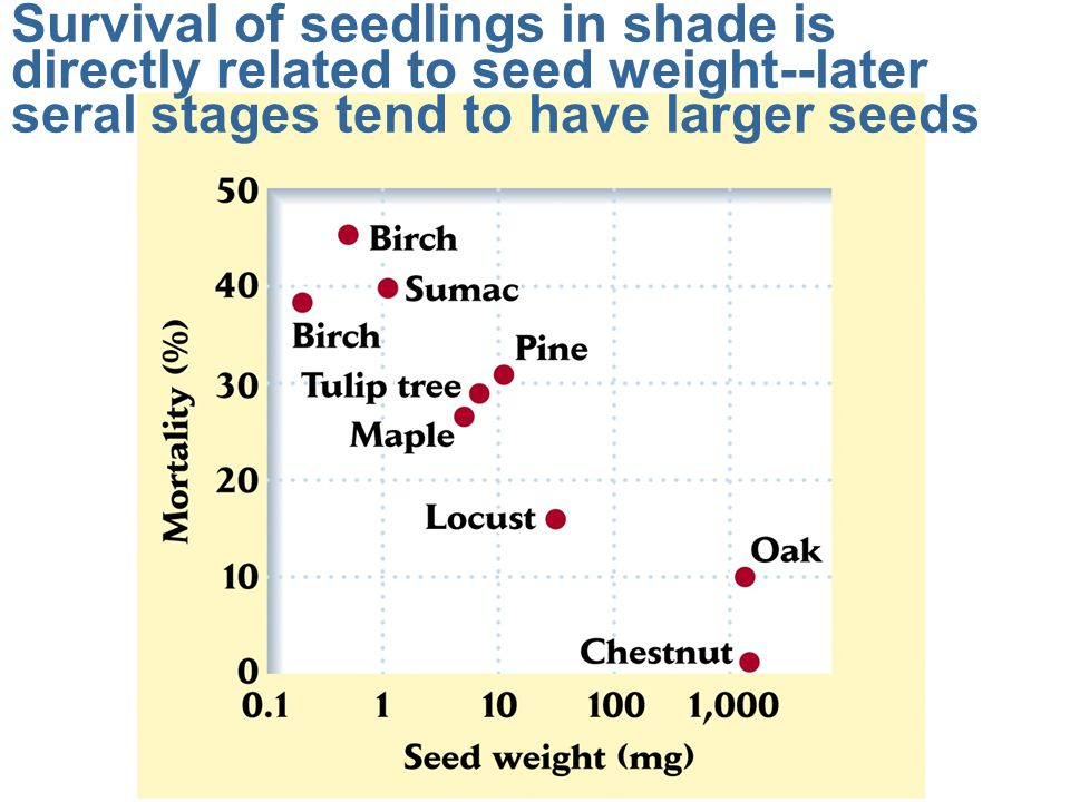 Survival of seedlings in shade is directly related to seed weight--later seral stages tend to have larger seeds