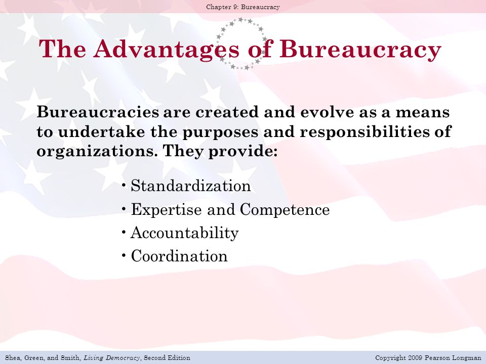 The Advantages of Bureaucracy