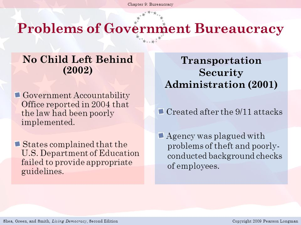Problems of Government Bureaucracy