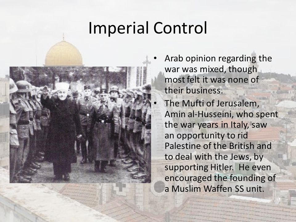 Imperial Control Arab opinion regarding the war was mixed, though most felt it was none of their business.