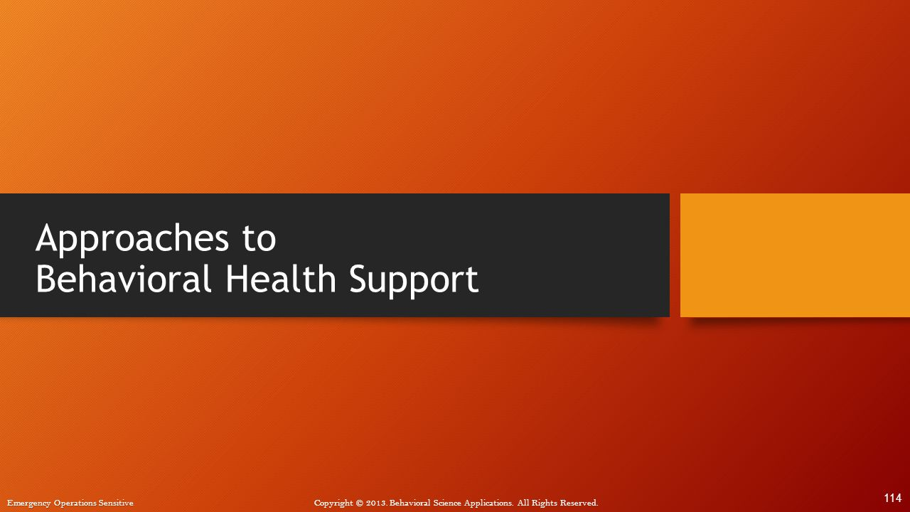 Approaches to Behavioral Health Support