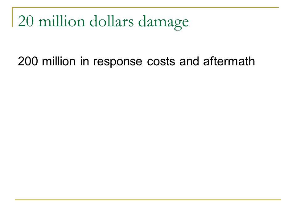 20 million dollars damage