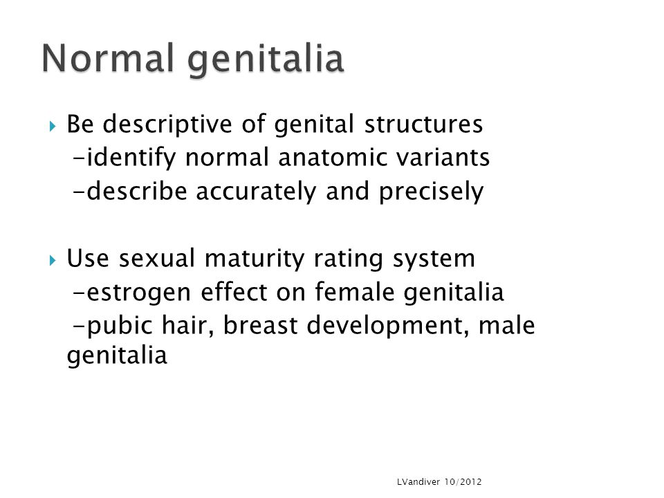 Normal genitalia Be descriptive of genital structures