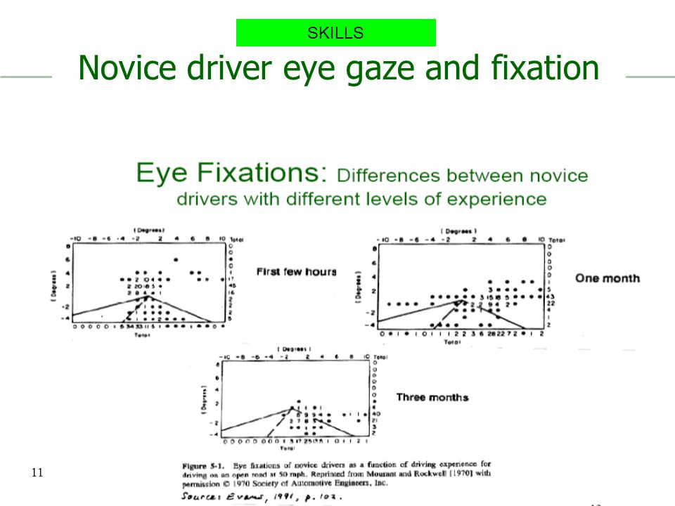 Novice driver eye gaze and fixation