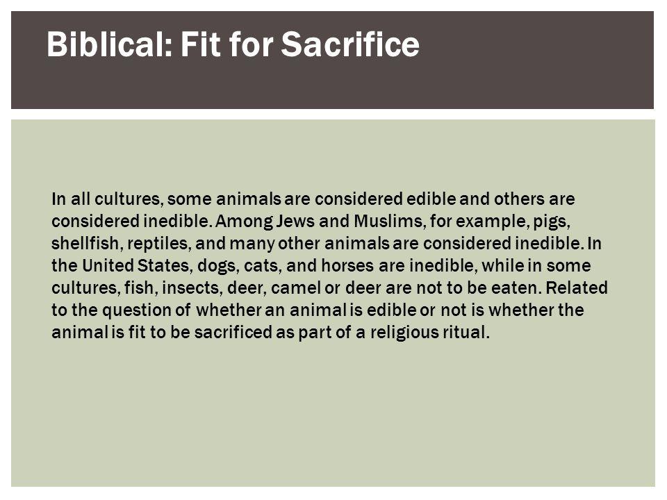 Biblical: Fit for Sacrifice