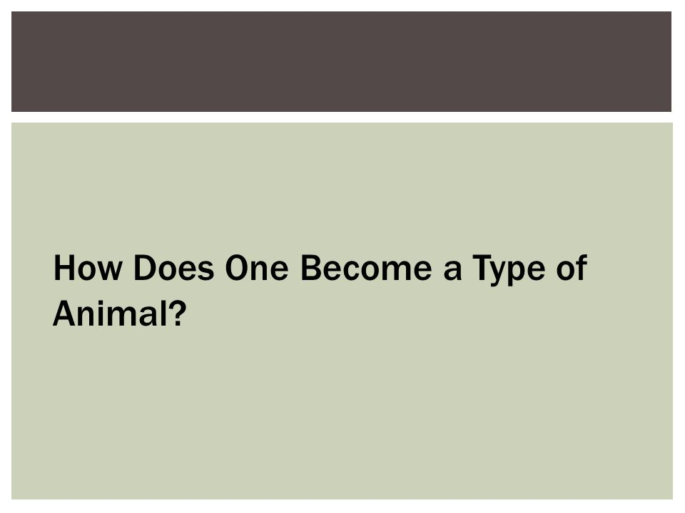 How Does One Become a Type of Animal