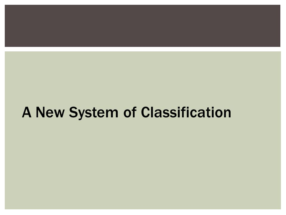 A New System of Classification