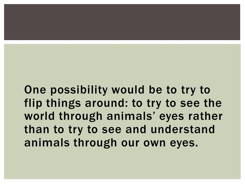 One possibility would be to try to flip things around: to try to see the world through animals' eyes rather than to try to see and understand animals through our own eyes.