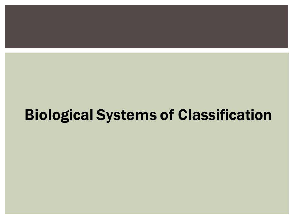 Biological Systems of Classification