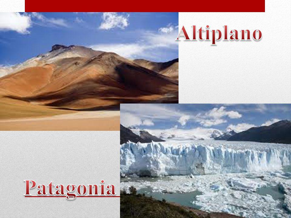 Altiplano Patagonia
