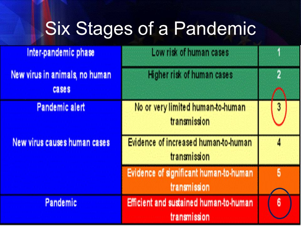 Six Stages of a Pandemic