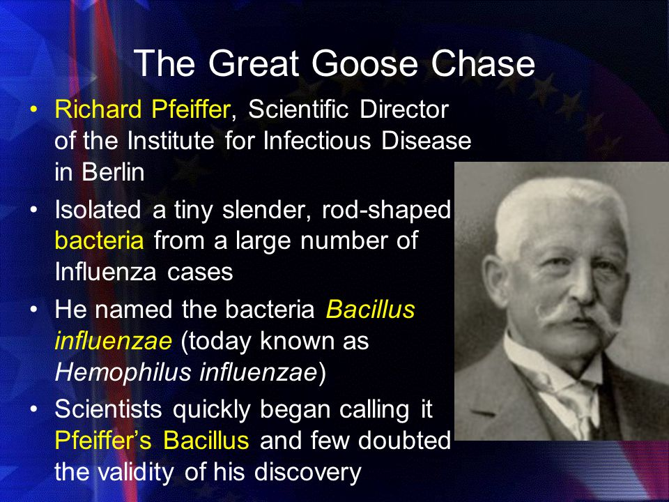 The Great Goose Chase Richard Pfeiffer, Scientific Director of the Institute for Infectious Disease in Berlin.