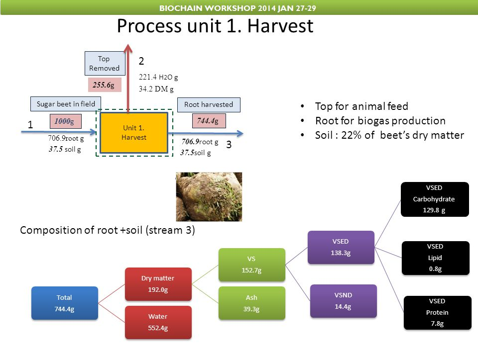 Process unit 1. Harvest 2 Top for animal feed