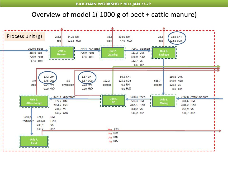 Overview of model 1( 1000 g of beet + cattle manure)