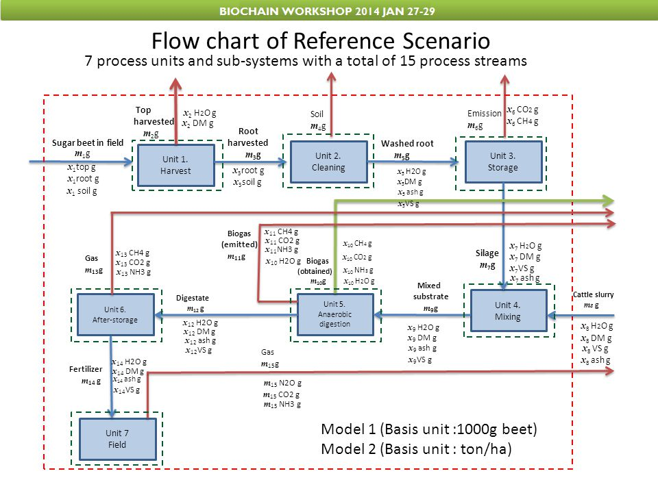 Flow chart of Reference Scenario