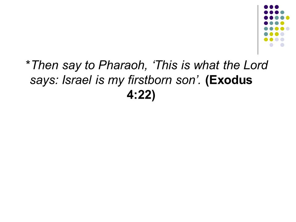 *Then say to Pharaoh, 'This is what the Lord says: Israel is my firstborn son'. (Exodus 4:22)
