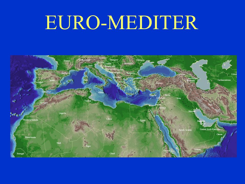 EURO-MEDITER The geographic region covered by RELEMR is shown here.