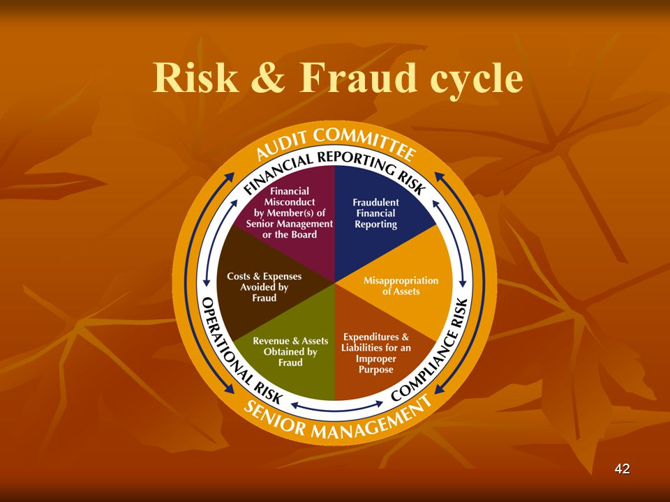 Risk & Fraud cycle