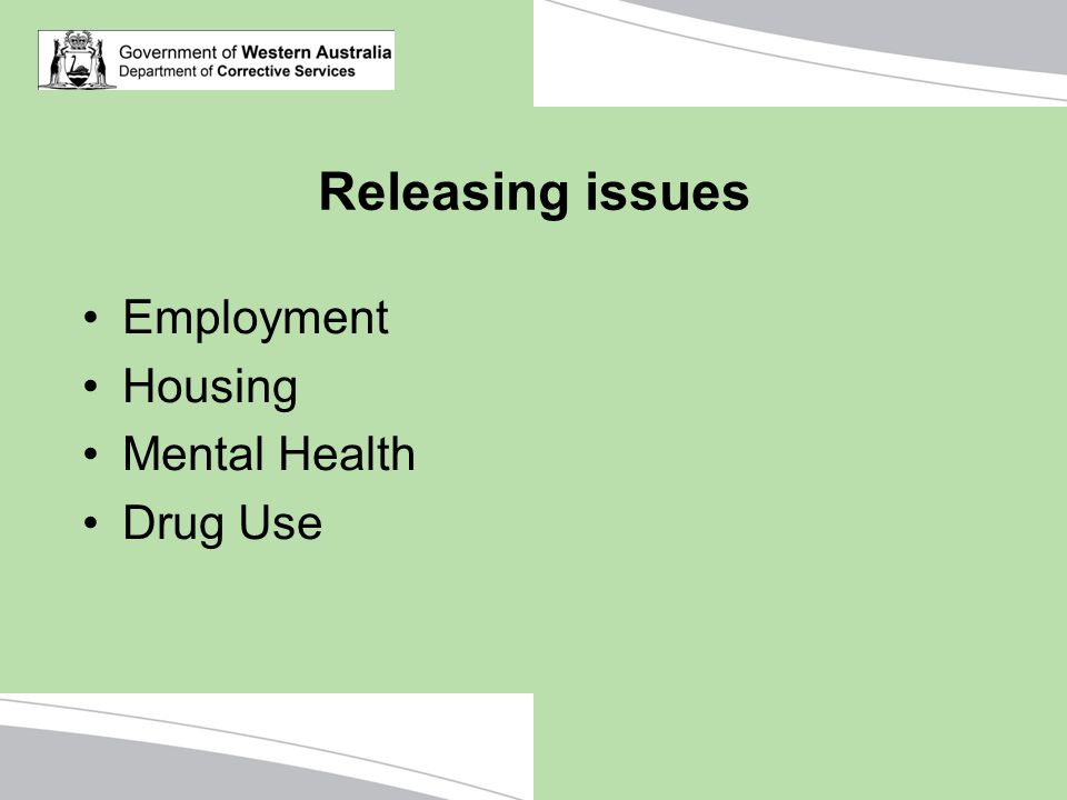 Releasing issues Employment Housing Mental Health Drug Use