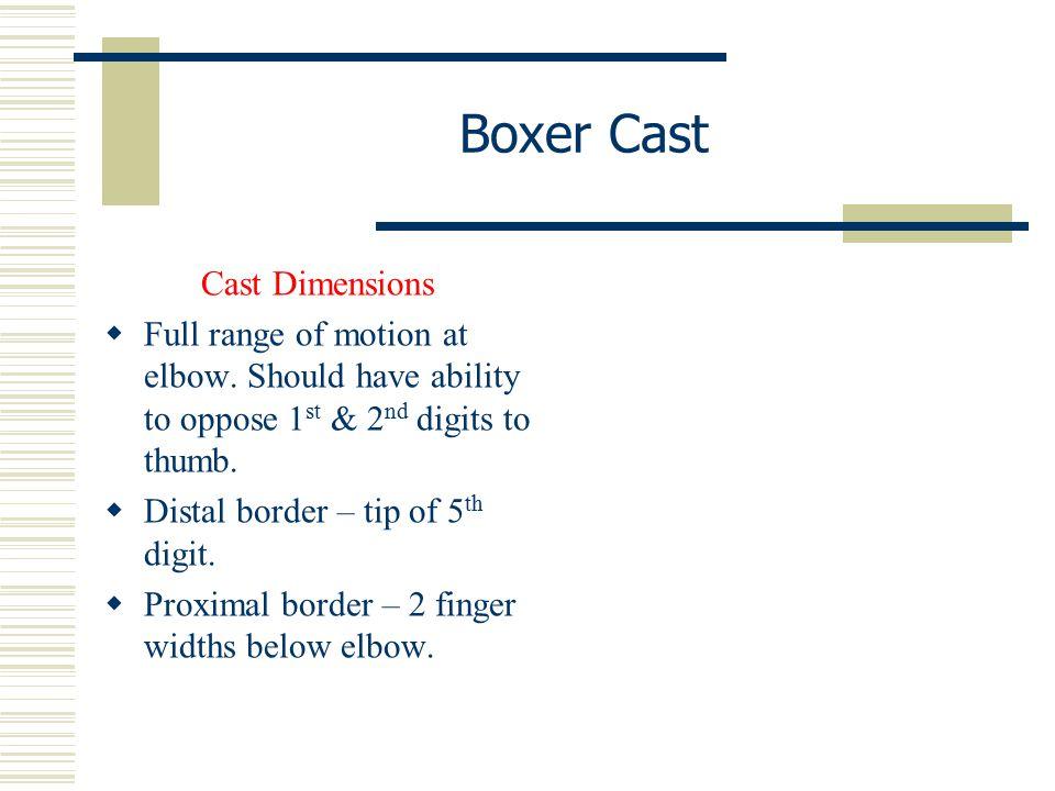 Boxer Cast Cast Dimensions