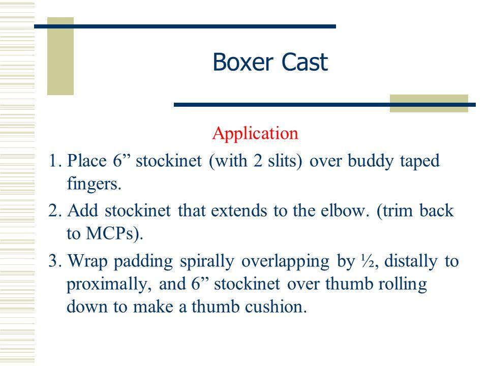 Boxer Cast Application
