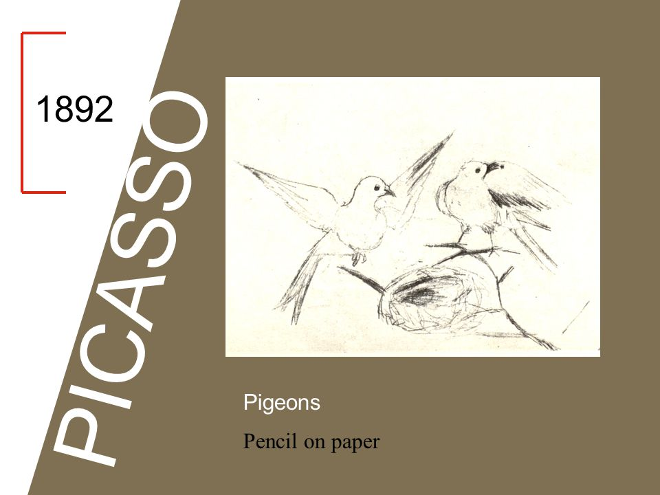1892 PICASSO Pigeons Pencil on paper