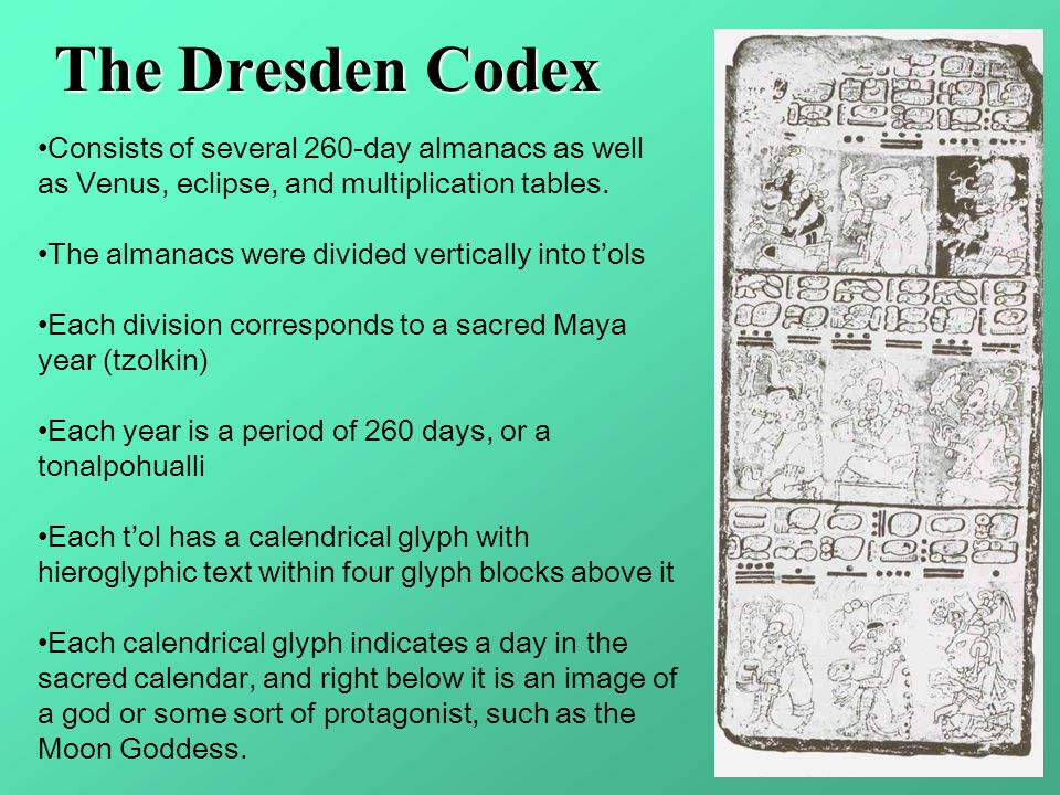 The Dresden Codex Consists of several 260-day almanacs as well as Venus, eclipse, and multiplication tables.