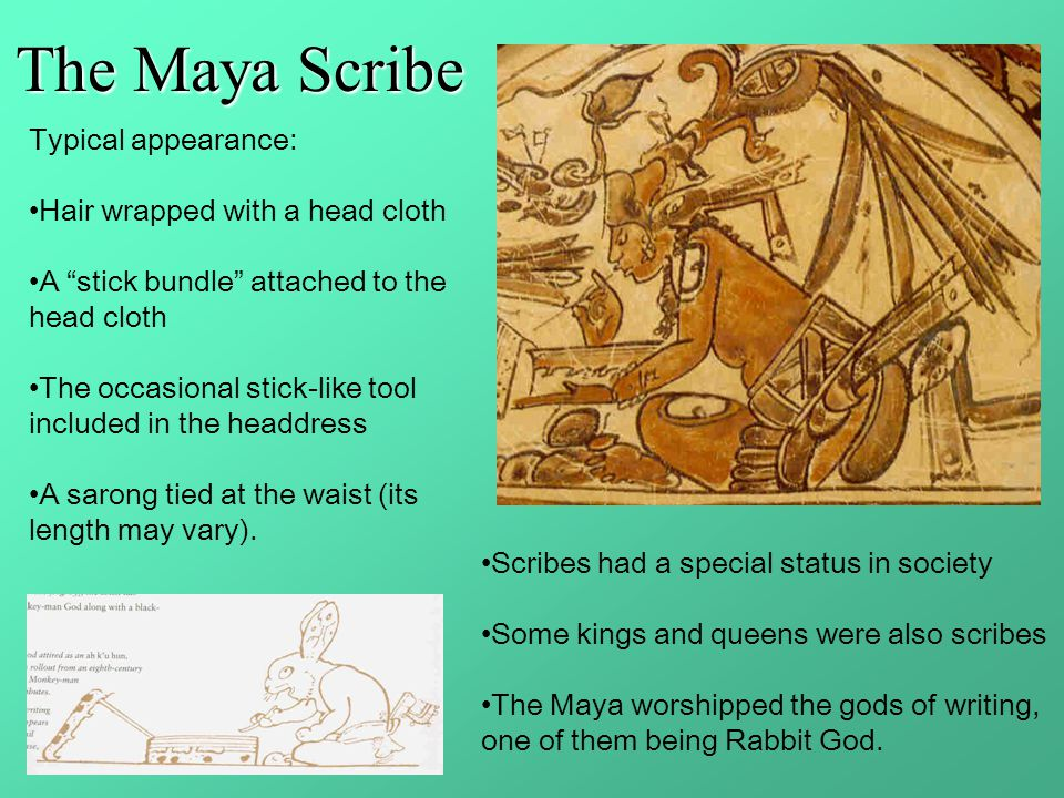The Maya Scribe Typical appearance: Hair wrapped with a head cloth