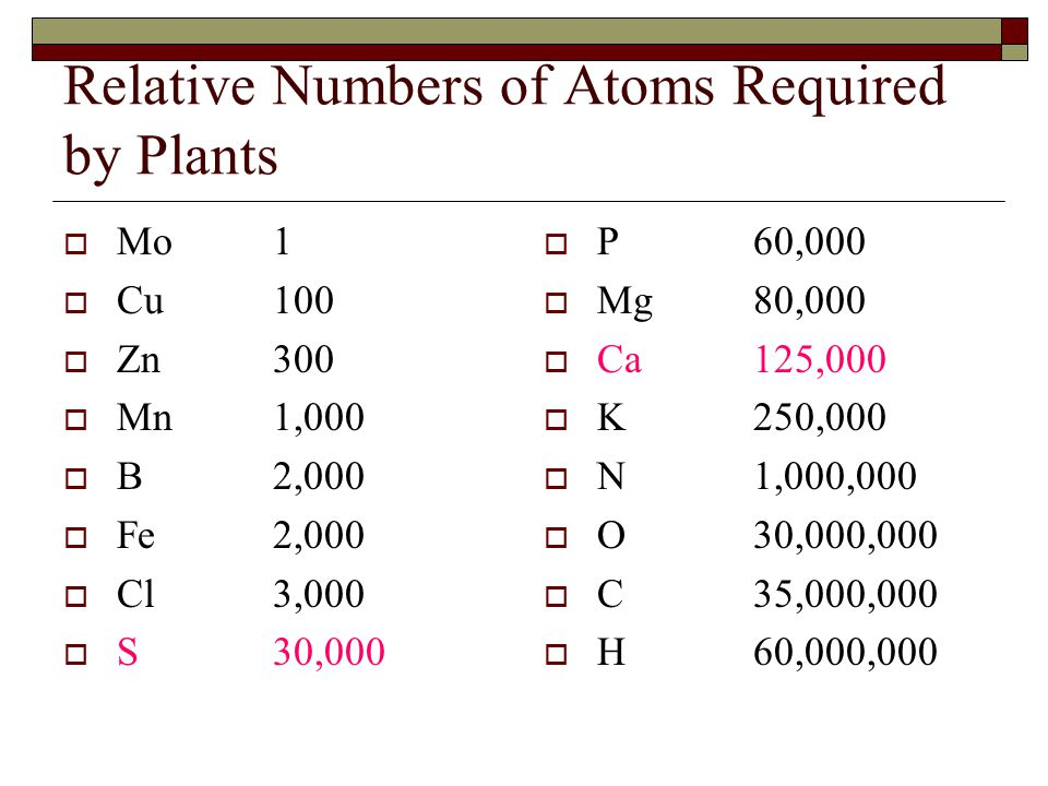 Relative Numbers of Atoms Required by Plants