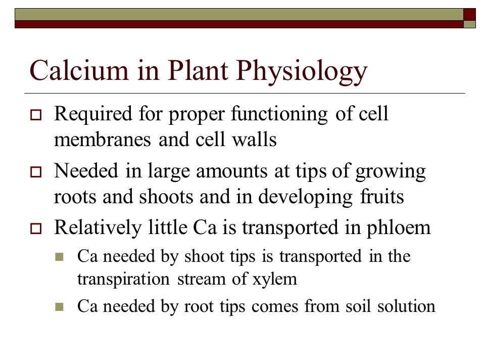 Calcium in Plant Physiology