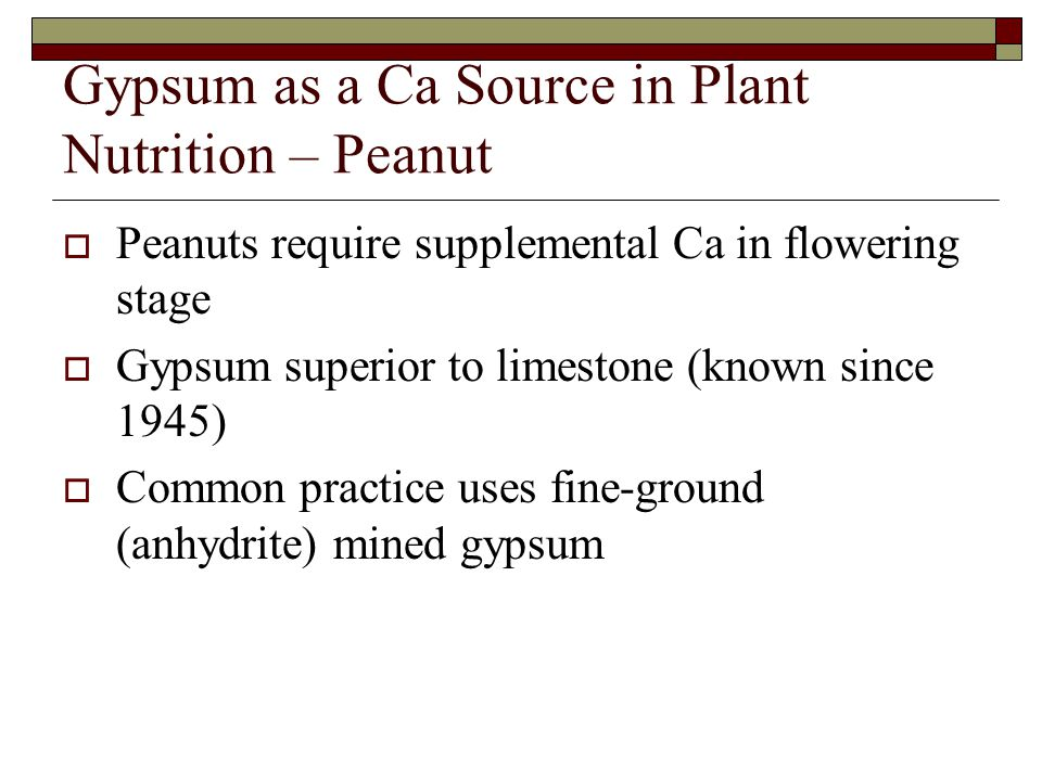 Gypsum as a Ca Source in Plant Nutrition – Peanut