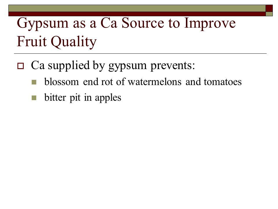 Gypsum as a Ca Source to Improve Fruit Quality