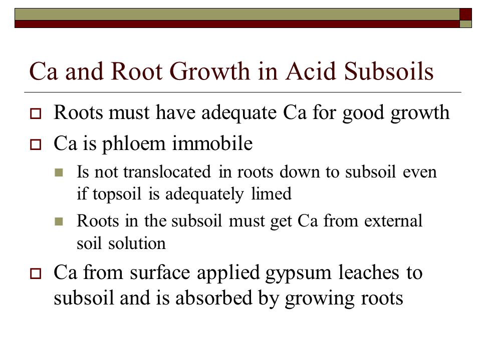 Ca and Root Growth in Acid Subsoils