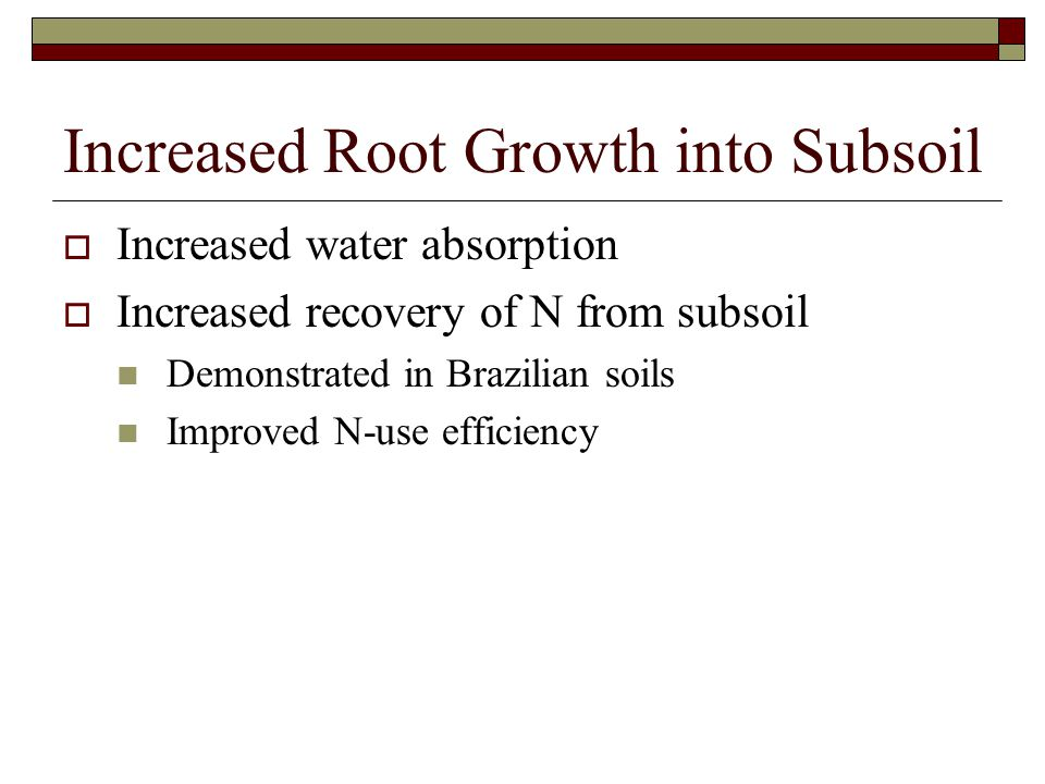Increased Root Growth into Subsoil
