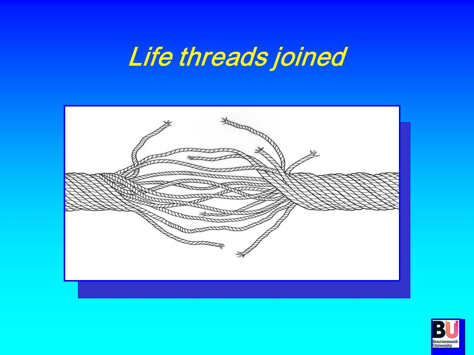 Life threads joined See role of nurse to help person connect who they were to who they want to be.
