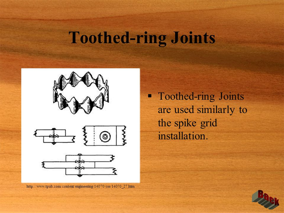 Toothed-ring Joints Back