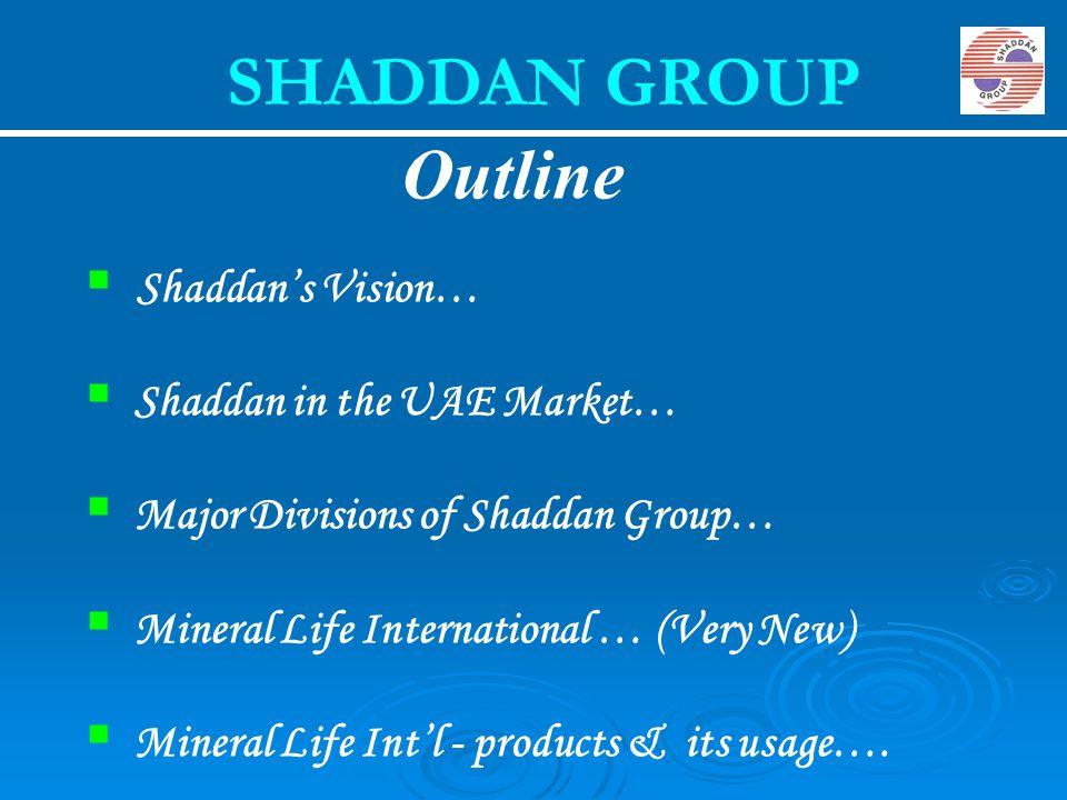 SHADDAN GROUP Outline Shaddan's Vision… Shaddan in the UAE Market…