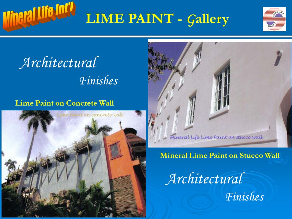 Mineral Lime Paint on Stucco Wall