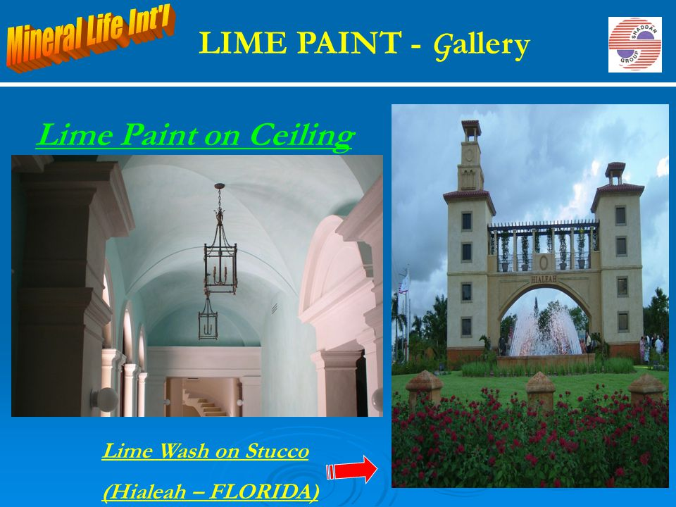 LIME PAINT - Gallery Lime Paint on Ceiling Mineral Life Int l