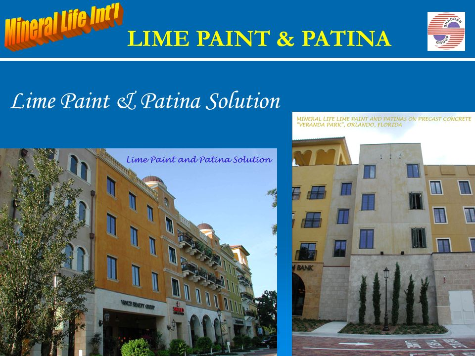 Lime Paint & Patina Solution