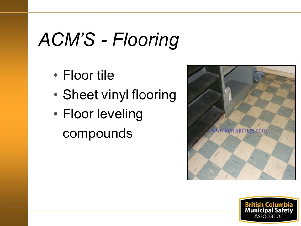 ACM'S - Flooring Floor tile Sheet vinyl flooring Floor leveling