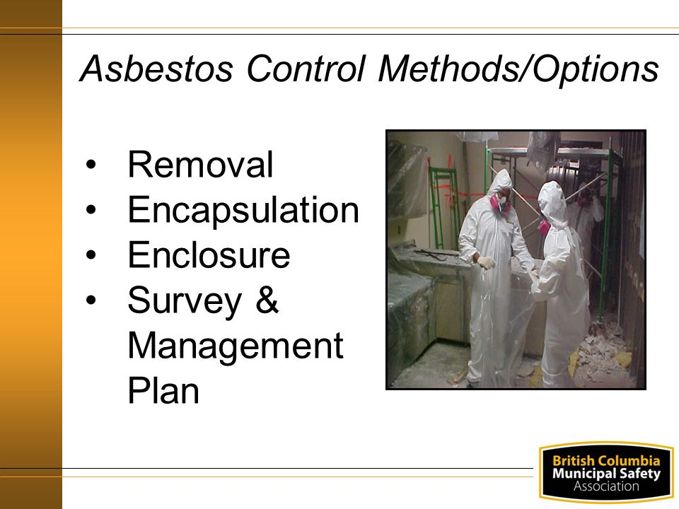 Asbestos Control Methods/Options