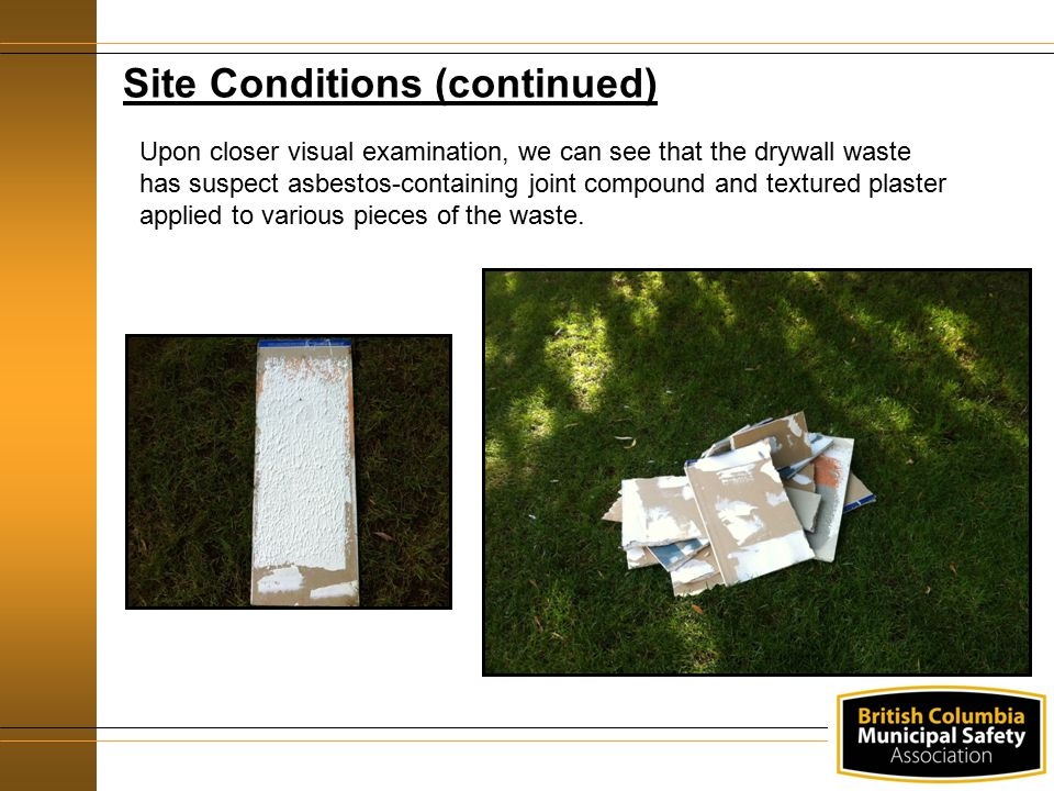 Site Conditions (continued)