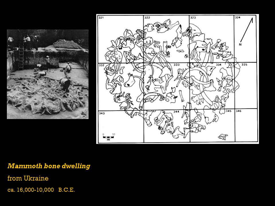 Mammoth bone dwelling from Ukraine ca. 16,000-10,000 B.C.E.