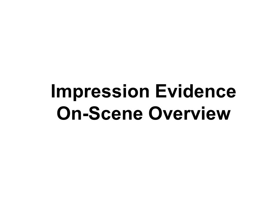 Impression Evidence On-Scene Overview