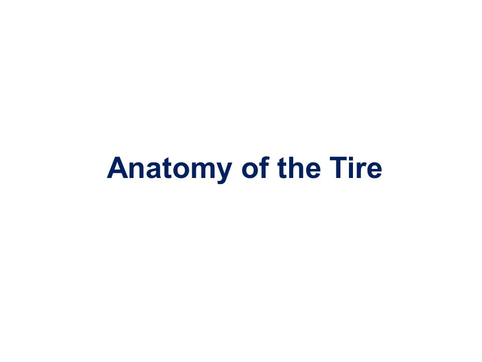 Anatomy of the Tire