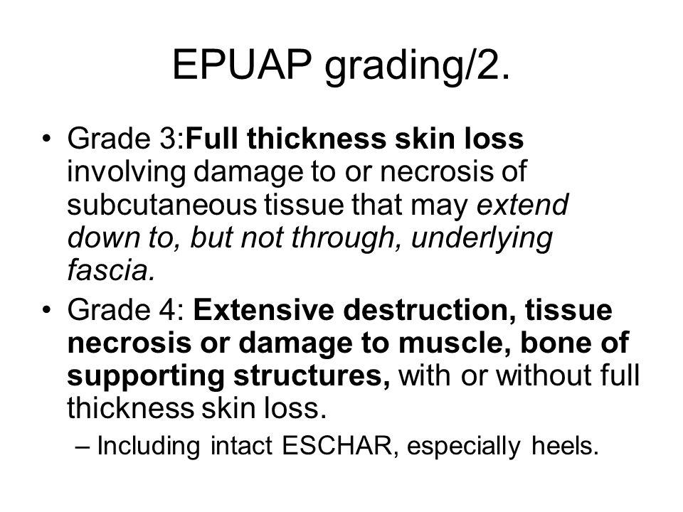 EPUAP grading/2.